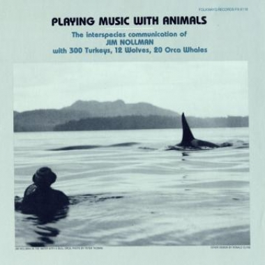 Album art, Playing Music with Animals: Interspecies Communication of Jim Nollman with 300 Turkeys, 12 Wolves and 20 Orcas, Jim Nollman, 2004 Smithsonian Folkways Recordings / 1982 Folkways Records