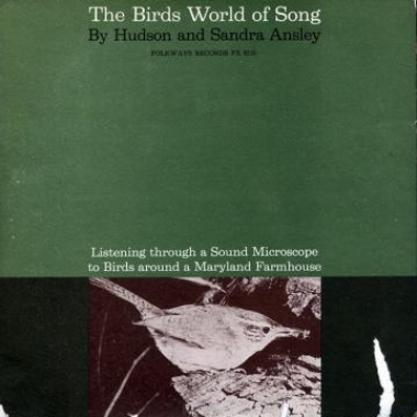 Album art, The Birds World of Song, Various artists,  2004 Smithsonian Folkways Recordings / 1961 Folkways Records