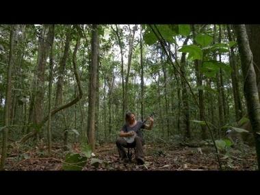 Sharon Martinson: Science Meets Music