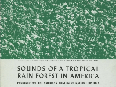 Album cover, Sounds of a Tropical Rain Forest in America, various artists, 2004 Smithsonian Folkways Recordings / 1952 Folkways Records